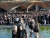 amphi100724_fans-58